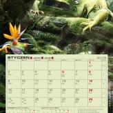 agraf_kalend_2012